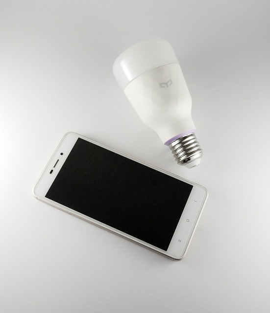 the-light-bulb-4498792_640